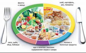 Инструкция Ответственного За Организацию Питания В Школе